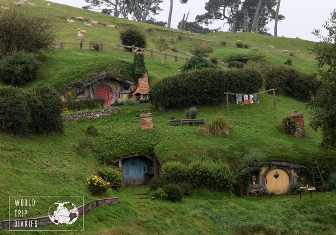 Hobbiton is located in an actual working sheep farm in Matamata, NZ. It probably adds more character to the place!