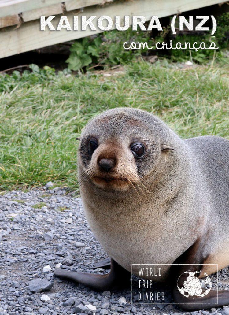 Kaikoura, na NZ, é um lugar incrível! Um paraíso para os amantes dos animais, e aonde as montanhas encontram o mar. Destino perfeito para uma viagem em família!