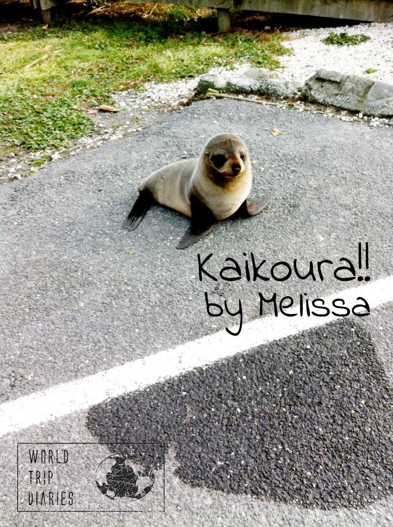 Melissa (13) talks about her favorite memories of Kaikoura, NZ, during her family trip there!