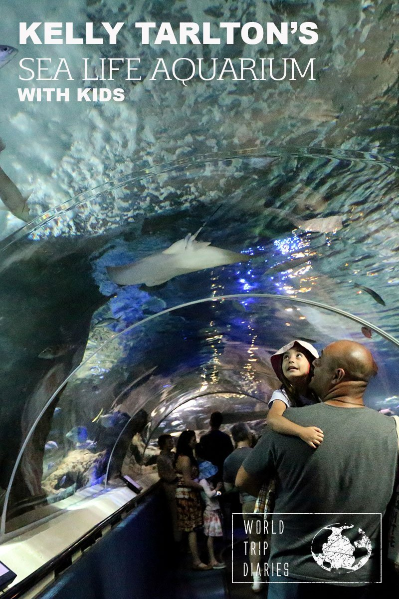 Kelly Tarlton's Sea Life Aquarium is Auckland (NZ)'s only aquarium. We visited it with our kids and you can read all about it here!