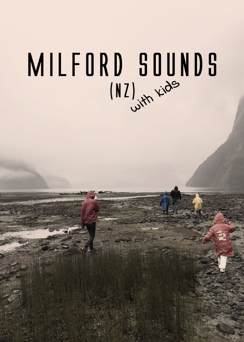 We paid a visit to Milford Sound with our kids. Click to read about it!