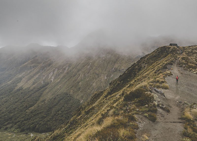 The Fiordland National Park is amazing in its entirety. Find out why it's one of New Zealand's most beautiful places!