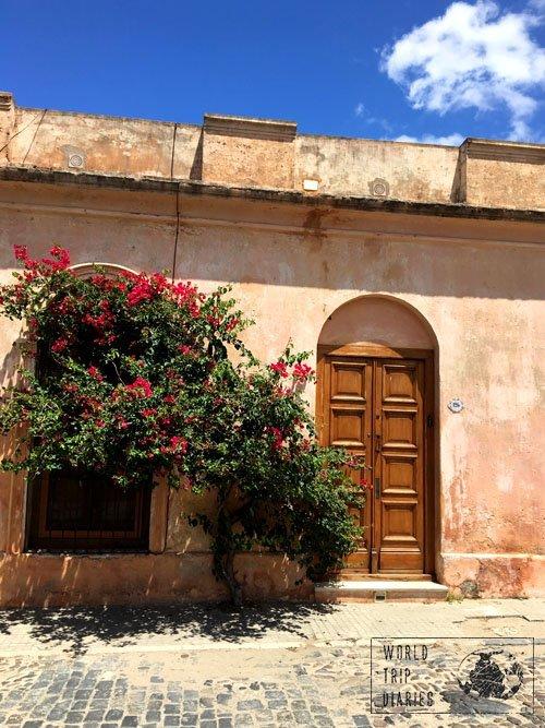 colonia uruguay houses