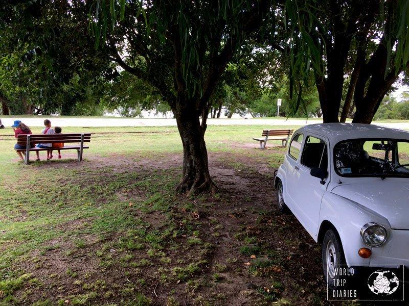 Colonia vintage cars uruguay