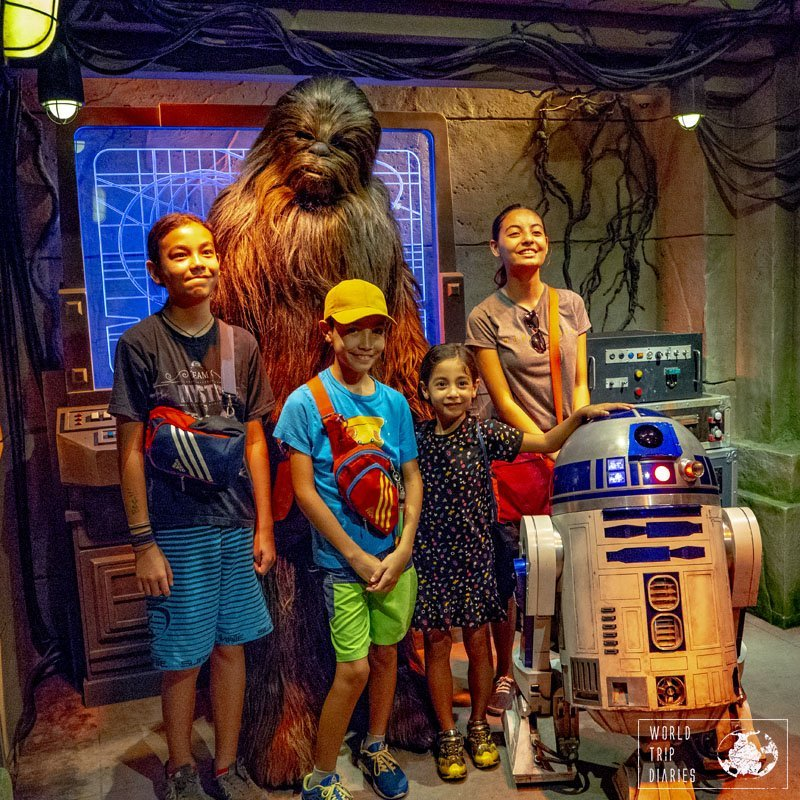 Any Star Wars fan should pay Chewie and R2 a visit at Hong Kong Disneyland. They are fun and sweet!