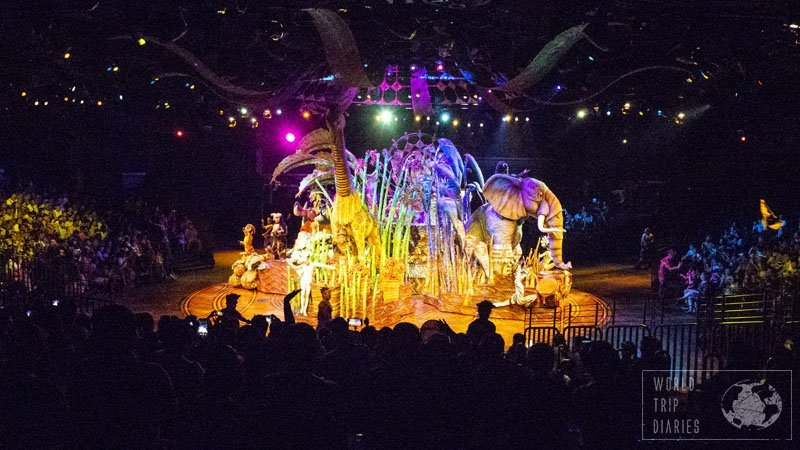 Disney shows are always great and the Lion King show at Disney Hong Kong couldn't be different! We loved it!