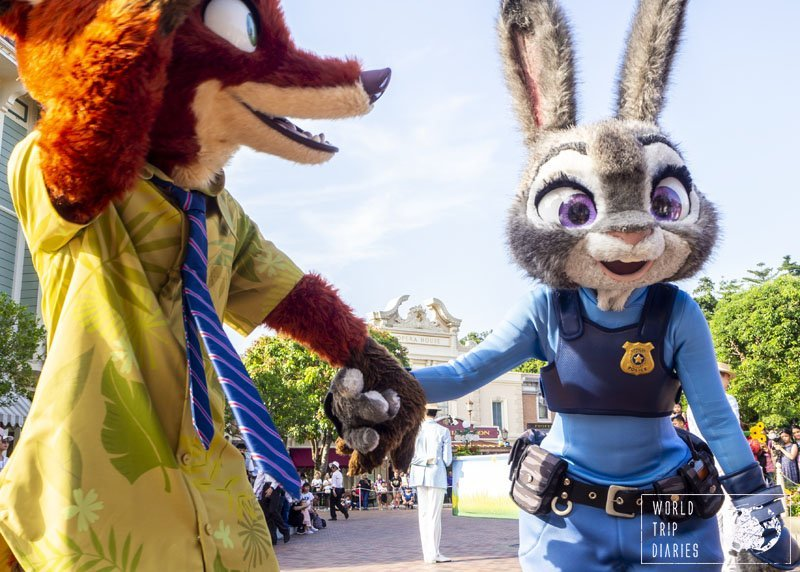 At the end of Springtime Festival parade, if you stay near the Town Square, you'll have a lot of time to take amazing photos and interact a bit with these Zootopia (Zootropolis) characters. Love!