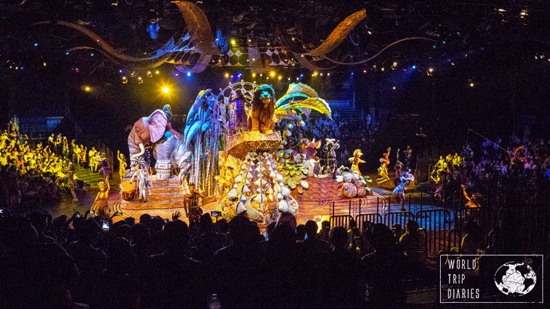 Disneyland Hong Kong's shows are amazing and you should, definitely, watch at least one of them! They're great for all ages!