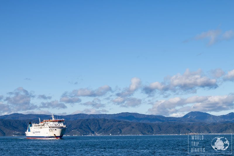 There are two ferries in NZ between Wellington and Picton. Both are around the same price, and same quality. Click for more detailed info!