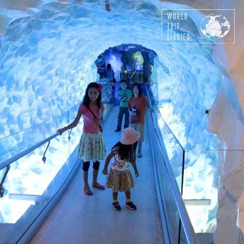 The first thing we see when we enter Kelly Tarlton's is this glacier tunnel, which is pretty cool!