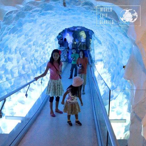 Esse túnel no Kelly Tarlton Sea Life Aquarium (Auckland, NZ) é muito legal. Dá a impressão de movimento, bem divertido, apesar da ponte ser parada.