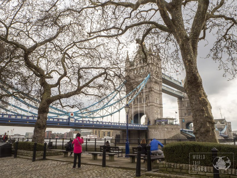 London's iconic Tower Bridge, raising behind 2 bald trees. London is such a family-friendly destination, albeit expensive... Click for more!