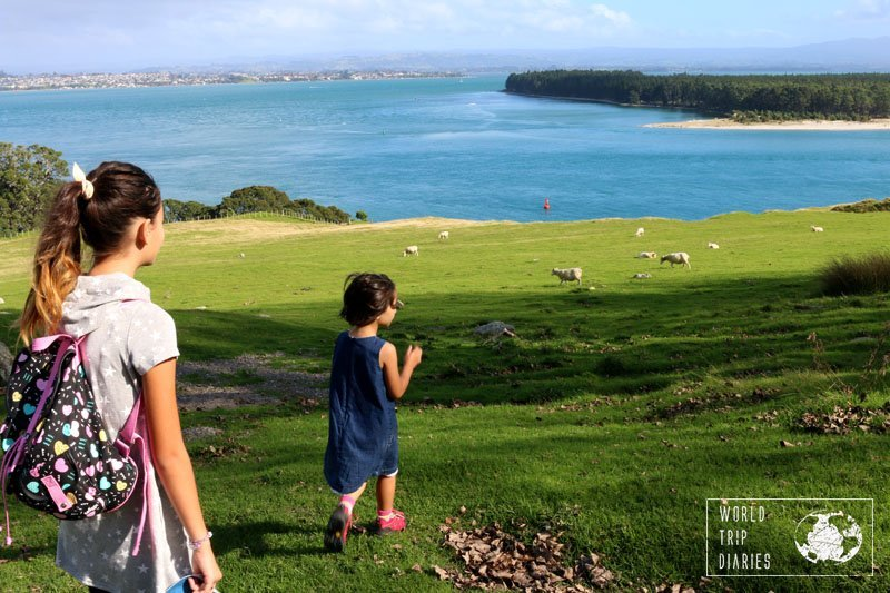 The climb to the top of Mount Mauao, in Mount Maunganui, NZ, is highly family friendly! Click for more!