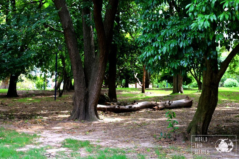Parque Batlle is another free attraction in Montevideo. It's a huge park right beside the soccer stadium! Find out more!
