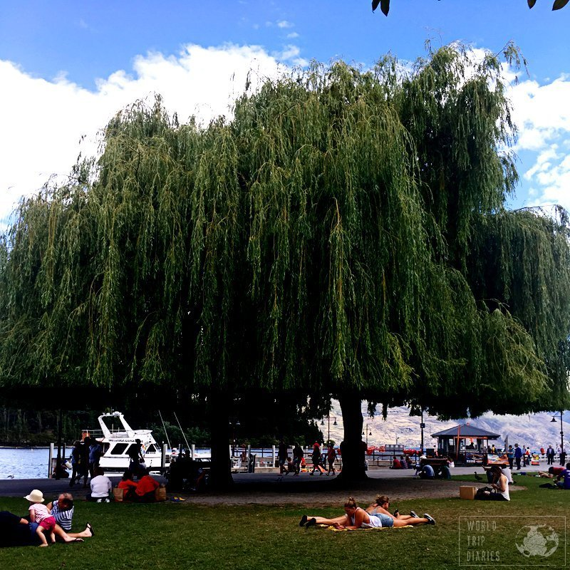 One of the best Queenstown activities in summer is sun bathing. Free, fun, warm, and popular. All in one.