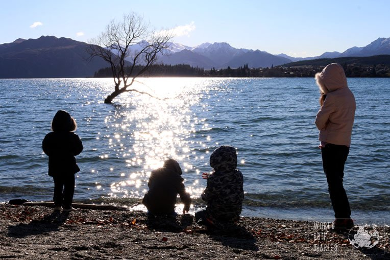 The Wanaka Tree, that grows inside Lake Wanaka. Everyone that stops in Wanaka takes a photo there. It's a NZ must!