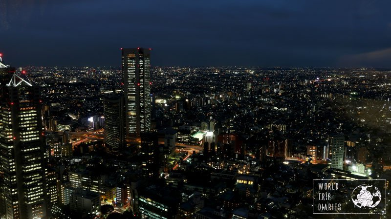 The view from Tokyo Metropolitan Government Building at night is stunning! It's a great place to visit and it's free!