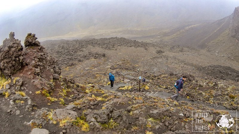 The Tongariro Alpine Crossing, one of New Zealand's most famous one-day hikes, offers incredible views and it's free! Find out more!